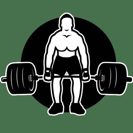 Muscle Lead